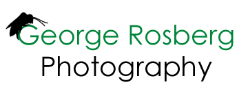 George Rosberg Photography web